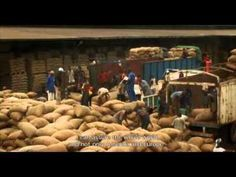 West Africa: Slavery in the Chocolate Industry