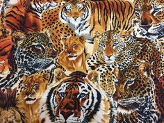 Fabric for sale Jungle Cat, Cat Fabric, African Animals, Cheetah, Tigers, Lions, Cats, Cheetah Animal, Gatos