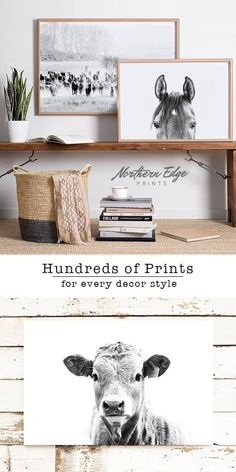 Northern Edge has high quality digital prints for all your DIY home decor ideas. Check out our southwest peekaboo horse and steer décor wall art. We have the perfect holiday prints, with steers, cows, holsteins and horses. Every country home and cottage n Western Rooms, Western Wall Decor, Country Western Decor, Western Bathrooms, Western Style, Rustic Decor, Looks Country, Equestrian Decor, Equestrian Bedroom