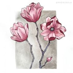 Magnolias painting ♡ (@phenuxela) Magnolia Paint, Magnolias, White Ink, My Drawings, Watercolor Paintings, My Love, Tattoos, Flowers, Animals