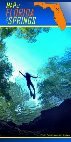 FLORIDA SPRINGS LOCATOR: One of Florida's natural hidden jewels is more than 700 natural springs sprinkled throughout the state that offer many great activities and fun in its natural environment. Florida's crystal clear and natural springs not only are perfect for swimming, scuba diving, tubing and kayak or canoe sightseeing but also the springs provide a noteworthy aquarium for all native plants and animals. http://www.waterfront-properties.com/blog/a-spring-for-every-season.html