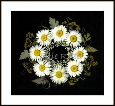 Original Pressed Flower Art | Green Mountain Pressed Flowers
