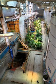Image 11 of 23 from gallery of Taitung Ruin Academy / Marco Casagrande. Photograph by AdDa Zei Industrial Architecture, Landscape Architecture, Interior Architecture, Landscape Design, Abandoned Buildings, Abandoned Places, Industrial Park, Adaptive Reuse, Interior Garden