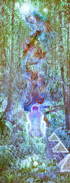 A Forested Jungle Vibrational Light Crystal Meditation Experience by eceertrey, via Flickr
