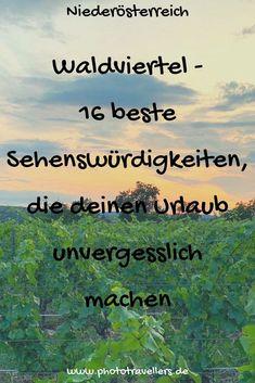 Im Waldviertel dreht sich nicht alles nur um den Wald. Erdäpfel wie der Österreicher sagt, also Kartoffeln und Mohn und der Wein spielen ebenso eine große Rolle im Waldviertel. Ich nehme dich nun mit auf eine wunderschöne Reise nach Niederösterreich ins Waldviertel und zeige dir die16 schönsten Sehenswürdigkeitenund Ecken für deinen Urlaub. #Waldviertel #Sehenswürdigkeiten #Niederösterreich #Wald #Natur #traumhaft #Urlaub #Reise #entspannt Homeland, Austria, Wanderlust, Camping, Tours, Vacation, Places, Nature, Traveling