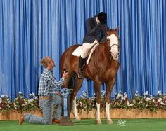 He just made huge brownie points! and the horse's expression is pretty funny!  Photo credits to Cross Creek Farm