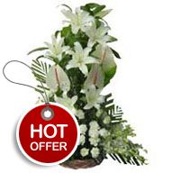 """Imagine the irresistible temptation of bright Lilies, Carnation,orchids,Anthurium, beautifully arranged in a basket, representing unprecedented cheerfulness and vibe. """"Enchanting Colors of Life"""" is an inspiring piece of art that motivates, enthralls, and stimulates the sense of happiness. http://flowershop18.in/flowers-to-lucknow.aspx"""