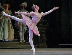 Alina Cojocaru as The Sleeping Beauty.