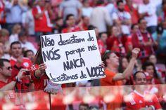"Sport Lisboa Benfica no Twitter: ""A galeria do #SLBenfica 3-1 CD Nacional em http://t.co/2xJoBUtvUM. #CarregaBenfica http://t.co/M8QHBaLyQE"" ."