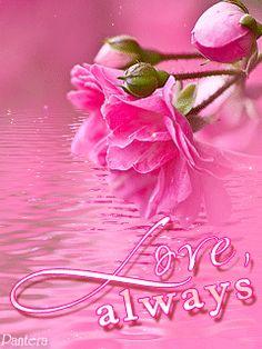 Love always,Brianna❤️