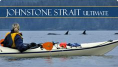 I have wanted to do this since I was 18. Kayaking the Johnstone Strait in British Columbia, hoping to get up close with Orca whales!!