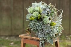 Succulent bridal bouquet with Tillandsia xerographica, Echeveria, Kalanchoe, dusty miller, seeded eucalyptus and bunny tail grass. By Cincinnati wedding florist Floral Verde.