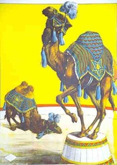 xx..tracy porter..poetic wanderlust- animals in art-Camels circus poster