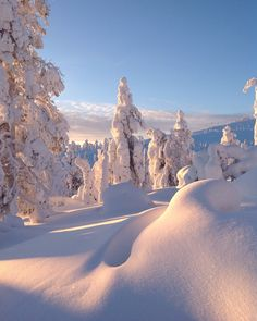 Levi, Finland. Photo credit @Virpula1
