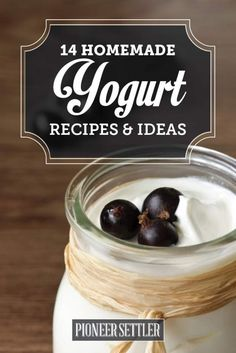 homemade recipes for yogurt Homemade Yogurt Recipes, Greek Yogurt Recipes, Homemade Cheese, Real Food Recipes, Cooking Recipes, Healthy Recipes, Healthy Food, Making Yogurt, Delicious Breakfast Recipes