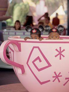 Walt Disney World (Orlando, FL)