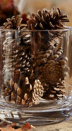 Natural Pinecone Vase Filler