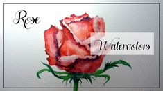 """""""Rose"""" Watercolor painting of a red rose on paper, easy rose illustration for beginners Watercolor Painting Youtube, Watercolor Brushes, Watercolor Rose, Watercolor Drawing, Watercolors, Easy Rose, Simple Rose, Rose Illustration, Time Painting"""