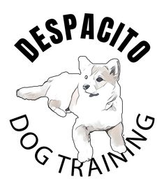 Despacito meme, meanings secrets of the lyrics. Despacito for girls. Despacito shirts. Despacito: gentle. If you are gentle toward something you become protective of it.