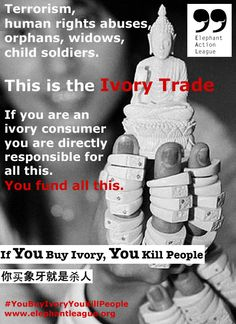 DON'T BUY IVORY PLEASE. The Human Toll of the Ivory Trade, a concept launched in March 2013 by the Elephant Action League. It's time for ivory consumers and governments to face even more serious responsibilities. Ban the ivory trade forever. Ivory Trade, Animal Graphic, Save The Elephants, Out Of Africa, Elephant Love, Cancer Cure, Teaching Writing, African Elephant, Animal Rights