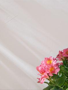 Apportez de la clarté à votre extérieur en choisissant la peinture façade blanche GoodHome. #castorama #inspiration #decoration #ideedeco #tendancedeco #peinture #façade #mursexterieurs Facade, Vase, Decoration, Inspiration, Home Decor, Decor, Biblical Inspiration, Decoration Home, Room Decor