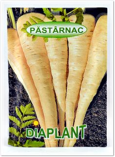 Seminte pastarnac DIAPLANT.