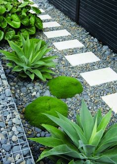 Stepping stones, gabions, pebbles and plants