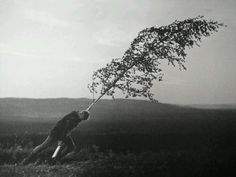 Max Von Sydow, The Virgin Spring (1960), Ingmar Bergman