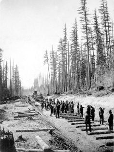 Chinese railroad construction workers laying the Canadian Pacific Railway track in 1924 near Glenogle, British Columbia, Canadian Pacific Railway, Canadian Rockies, Old Photos, Vintage Photos, Diorama, Canadian History, Old Trains, Train Pictures, Train Tracks