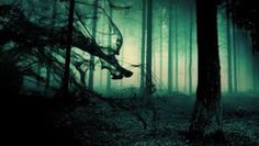 night forest black smoke blue fog green dark creepy story demon – My Roommate, The Demon Hunter Goth Wallpaper, Scary Wallpaper, Forest Wallpaper, Nature Wallpaper, Flower Wallpaper, Scary Backgrounds, Halloween Backgrounds, Wallpaper Backgrounds, Iphone Wallpapers