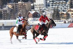 The Golden Ticket: A Look Inside the Edition of the St. Moritz Snow Polo World Cup – Attire Club by Fraquoh and Franchomme Golden Ticket, The St, World Cup, Polo, Snow, Polos, World Cup Fixtures, World Championship, Polo Shirt
