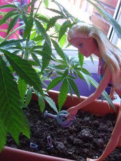 Mary Jane Barbie Bitch watching her garden grow! ;D ️LO