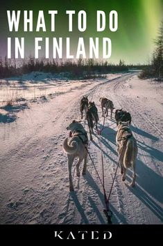 Kated puts you in direct contact with leading experience providers across the world to design the trip of your dreams. No agents. No fees. No worries. Visit our website to discover how to create the best moments in Finland. #finland #travelmemories #travelexperiences #travelconcierge #traveltips