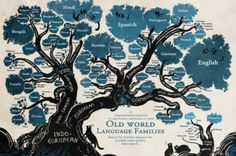 Linguistic family tree reveals the roots of Nordic languages - ScienceAlert