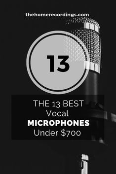 Best 14 Microphones for Singing and Vocals of - The Home Recordings Singing In The Car, Learn Singing, Singing Tips, Dj Music, Indie Music, Birthday Songs Video, Microphone For Recording, Singing Techniques, Custom Bass
