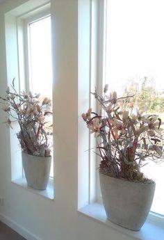 Bekijk de foto van bloemenobject met als titel vensterbank decoratie in betonlook bakken en andere inspirerende plaatjes op Welke.nl.