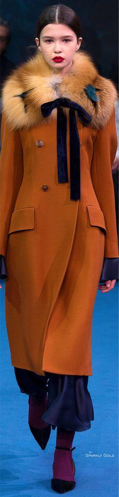 Roksanda Fall 2016 Ready-to-Wear Fashion Show Winter Wear, Autumn Winter Fashion, Fall Fashion, Mode Chic, Blazer, Coats For Women, Mantel, Winter Outfits, Womens Fashion