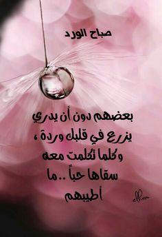 Good Morning Good Night, Morning Wish, Good Morning Images, Good Morning Quotes, Arabic Love Quotes, Arabic Words, Good Night Messages, Morning Greeting, Beautiful Words