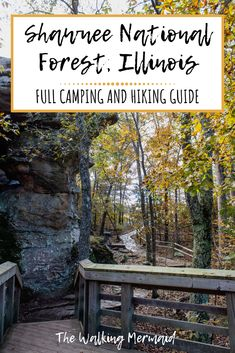 Shawnee National Forest, Southern Illinois, Illinois State, West Coast Trail, Camping Spots, Camping Guide, Colorado Hiking, Hiking Trails, Outdoor Travel