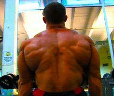 Back of a mutant