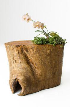 Tryo Design  móveis e luminárias feitas a partir de árvores descartadas da natureza !  Contato: carol@tryo.com.br  simone@tryo.com.br