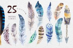 Bohemian watercolor feathers. Tribe - Illustrations - 4