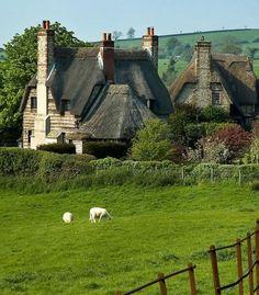 ~ Thatched roofs and sheep ~ England looks like a storybook ~ Just breathtakingly beautiful!!!!!