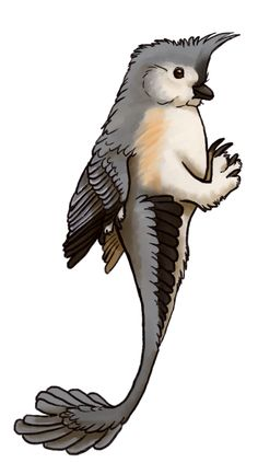 Bird-Raptors by Ceylon: A raptor patterned after a Tufted Titmouse