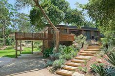 A pathway to the first floor- Modern Contemporary Native Garden Design Sydney Australian Garden Design, Australian Native Garden, The Farm, Bush Garden, Tropical Garden Design, Landscaping Work, Sloped Garden, Dream Garden, Garden Planning