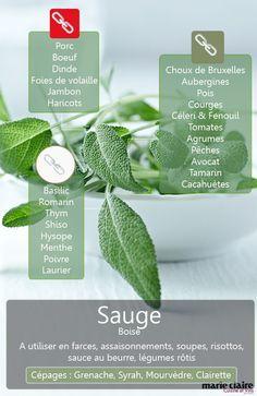 Voici les ingrédients utiles à connaître pour y marier la sauge