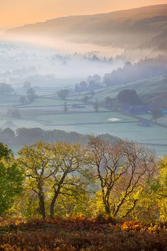 Upper Wharfedale, Yorkshire Dales, England  (by David Speight Photography)