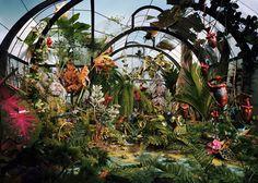 Botanic-Garden.jpg (980×700)