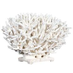 Large White Coral Centerpiece   From a unique collection of antique and modern sculptures at https://www.1stdibs.com/furniture/more-furniture-collectibles/sculptures/