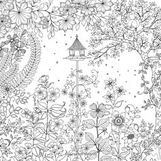 Secret Garden: An Inky Treasure Hunt and Coloring Book: Johanna Basford